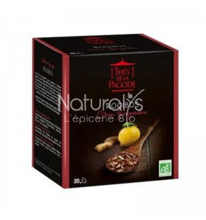 ROOIBOS CITRON GINGEMBRE - 20 INFUSETTES X 2 GR