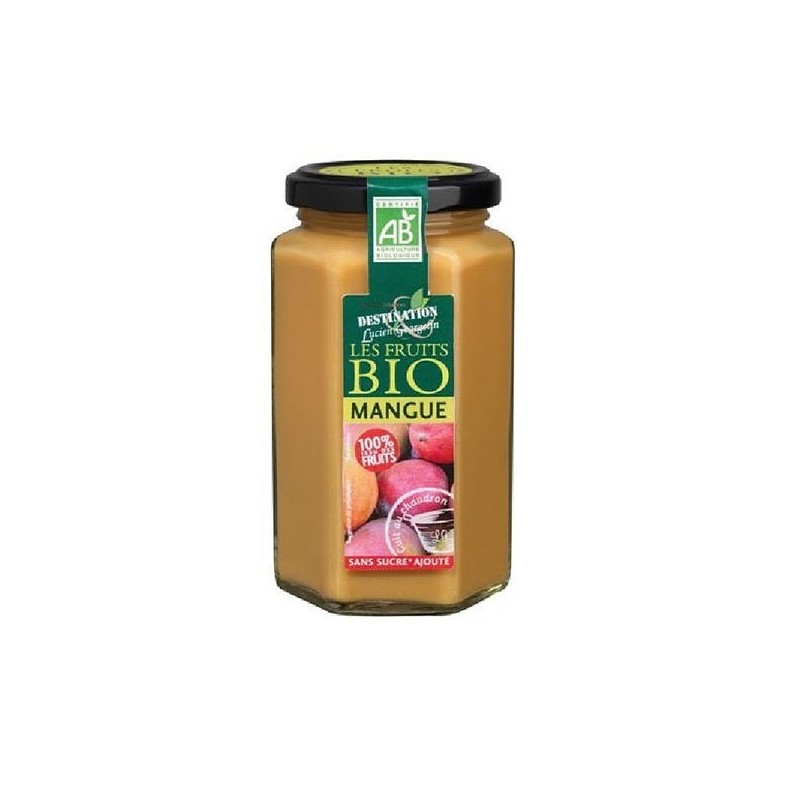 PREPARATION 100% FRUITS MANGUE - 300 GR