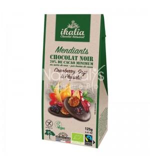 MENDIANT CHOCOLAT NOIR CRANBERRY GOJI ET PHYSALIS - 125 GR