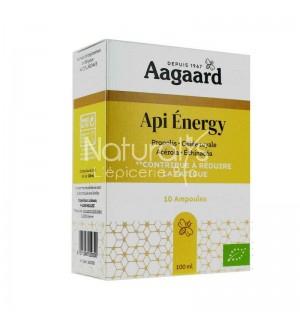API ENERGY - 10 ML X 10 AMPOULES