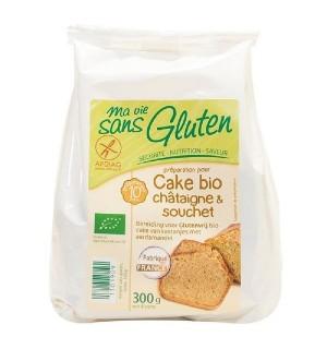 PREPARATION CAKE CHATAIGNE SOUCHET - 300 GR