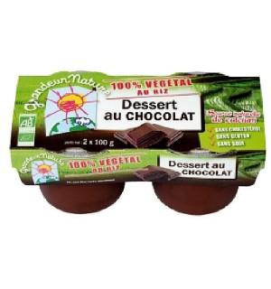 DESSERT DE RIZ AU CHOCOLAT - 2 X 100 GR